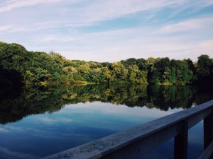 The Pennsauken Environmental Commission is sponsoring a clean-up day at Tippin's Pond and Heritage Park, 419 Cove Rd., Pennsauken, on Saturday, Sept. 19.
